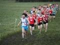 Start of the Senior Men\'s race