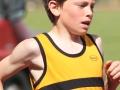 castleisland-track-field-2010_0059