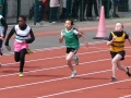 gu11-sprint